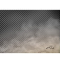 Smoke with fog flame isolated on transparent vector