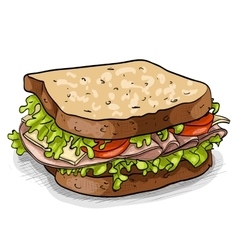 sandwich color picture vector image