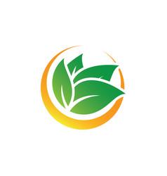 circle leaf nature logo image vector image vector image