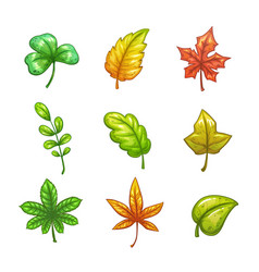 Cartoon colorful leaves set vector