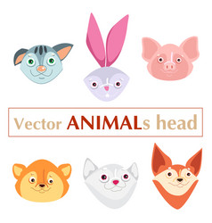 educational flashcard animals heads vector image