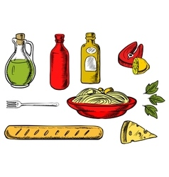 Italian pasta ingredients and food vector