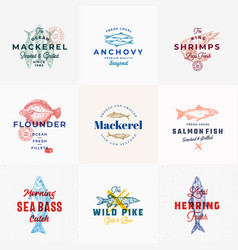 Premium seafood signs or logo templates set vector