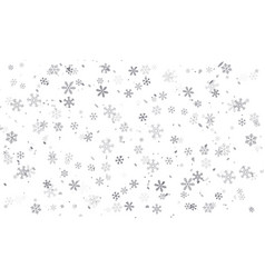 snowflakes on transparent background vector image