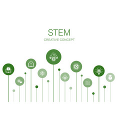 Stem infographic 10 steps template science vector
