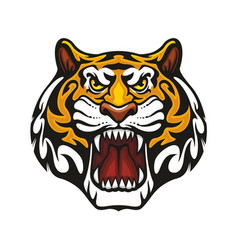 Tiger animal muzzle sport team mascot icon vector