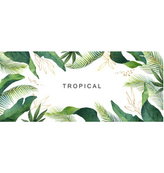 watercolor banner tropical leaves isolated vector image
