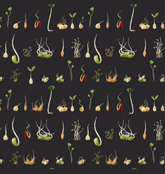 Watercolor beans peas seeds sprouts pattern vector