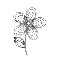 geranium flower decoration sketch vector image
