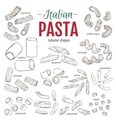 Set of hand drawn Italian pasta Tubular shapes vector image