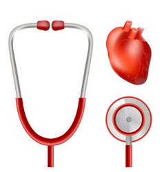Heart health and stethoscope isolated on a white vector