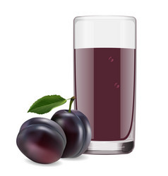 delicious juice from ripe plums vector image