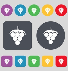 Grapes icon sign A set of 12 colored buttons Flat vector image