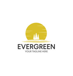 vintage evergreen pine tree logo design vector image