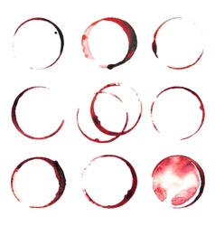 Wine stains vector