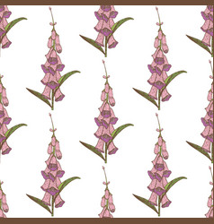 colored foxglove seamless pattern vector image