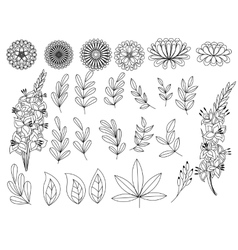Set of outline autumn leaves and flowers vector image vector image