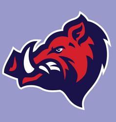 wild hog head mascot vector image vector image