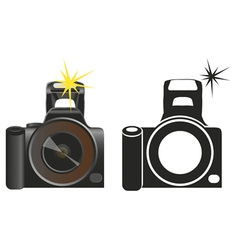 camera on white vector image