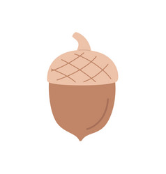 Cute acorn isolated on a white background hand vector