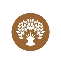 stylized tree logo with rich crown leaves vector image