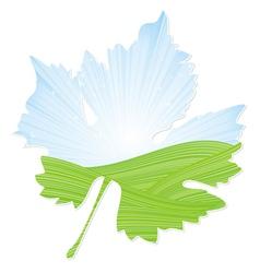 wine leaf vector image vector image