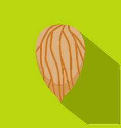 Apricot seed icon flat style vector