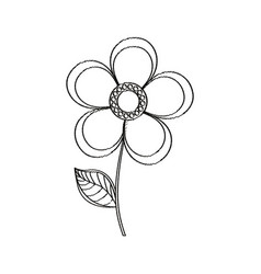 magnolia flower decoration sketch vector image vector image