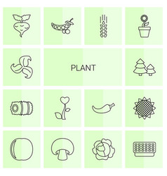 14 plant icons vector