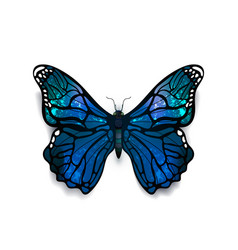 Beautiful blue detailed realistic butterfly vector