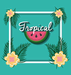 tropical watermelon flowers leaves palm frame vector image