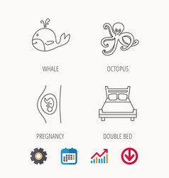 whale octopus and double bed icons vector image vector image