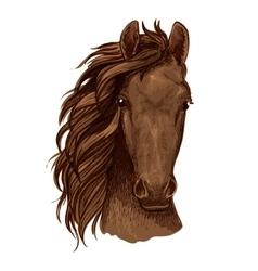 Arabian brown stallion portrait vector