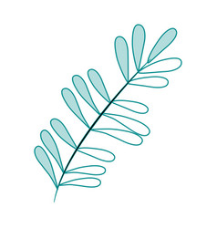 Blue silhouette image branch with ovals leaves vector