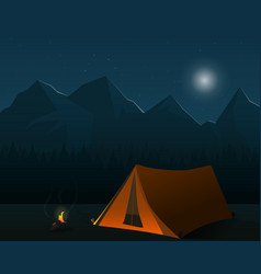 camping forest night illsutration landscape vector image