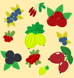 different kinds of berries vector image