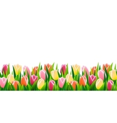 Green grass seamless border vector