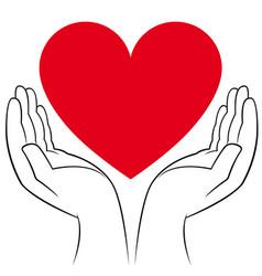 Heart in human hands vector