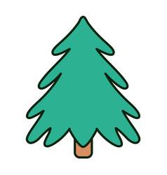 pine tree celebration merry christmas vector image