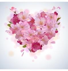 background with cherry petal heart vector image vector image
