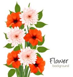 Flower summer background vector image