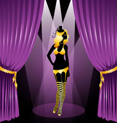 curtain cabaret vector image vector image