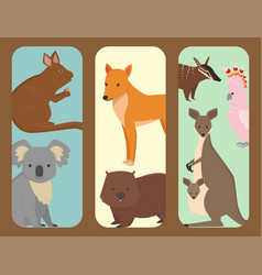 australia wild animals brochure cartoon popular vector image