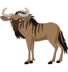 cartoon wildebeest isolated on white background vector image