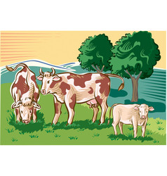 Cows and calf in the pasture vector