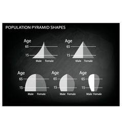 Different Types of Population Pyramids vector image