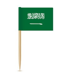 flag of saudi arabia flag toothpick vector image