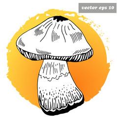 mashroom vector image