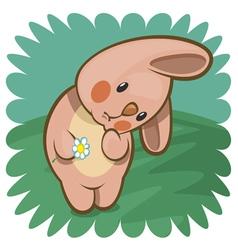 Pink bunny vector