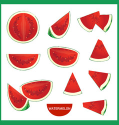 Set of fresh watermelon in various slice styles vector